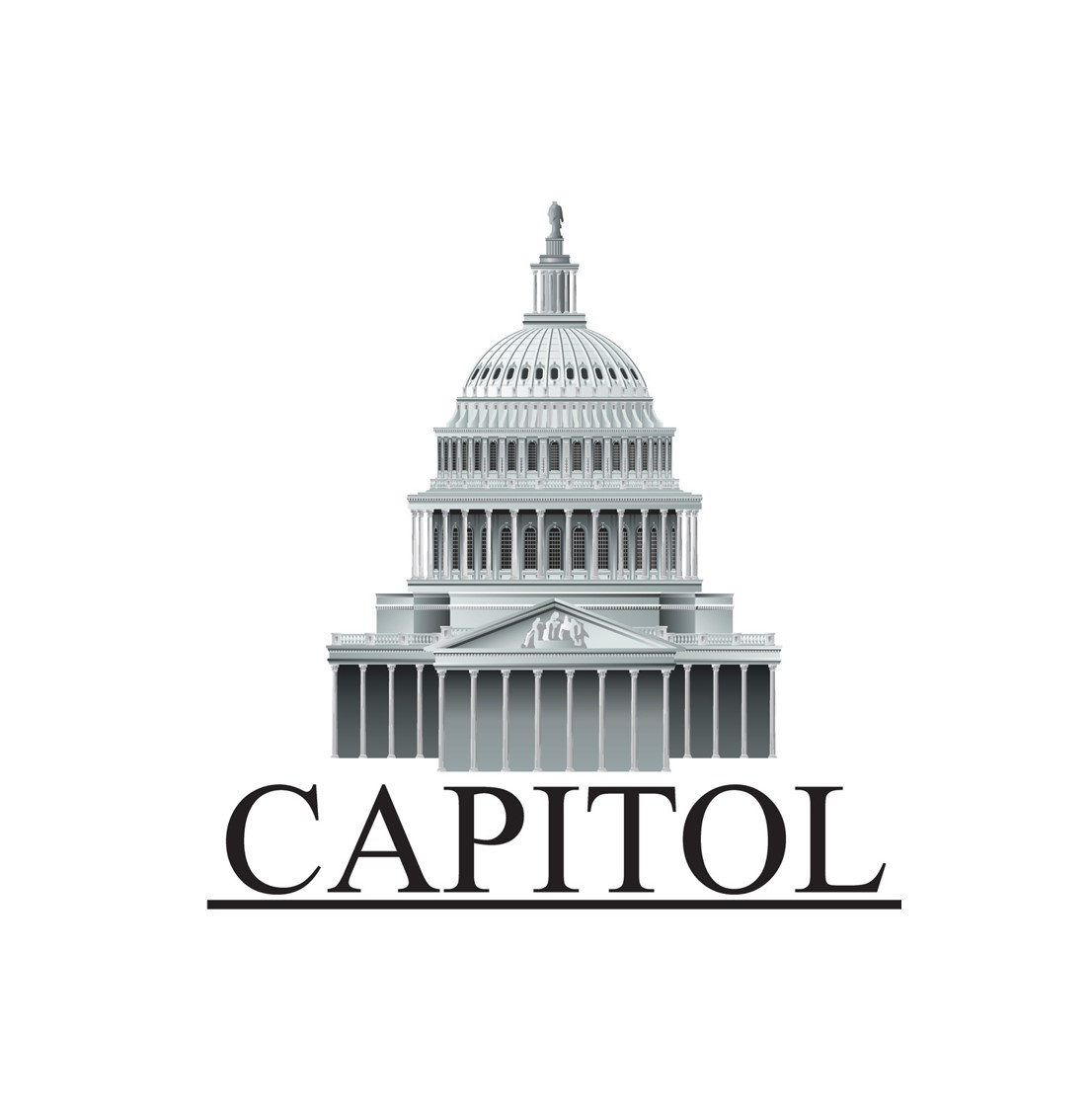 "<p><span style=""font-weight: bold;"">Capitol preferred insurance</span></p>"
